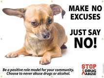DA_BANNER_No-Excuses_Dog